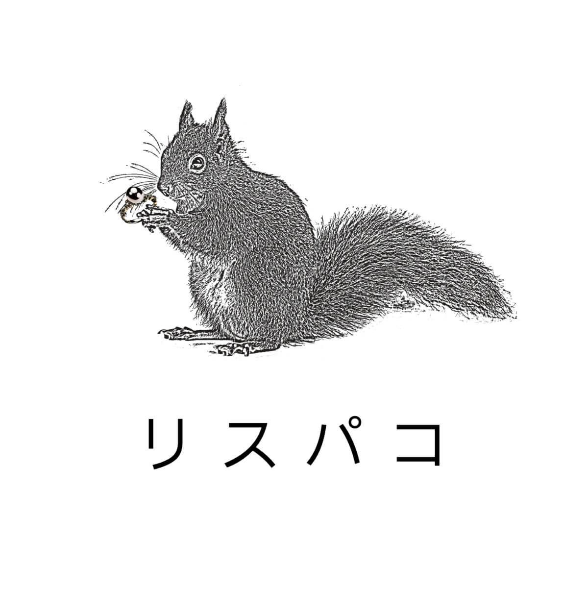 respako-logo4